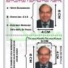 Contoh Gambar Visa